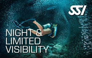 SSI Night & Limited Visibility
